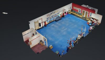 Louisville Panthers Tae Kwon Do 3D Model